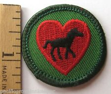 Retired Girl Scout 2001-2011 Junior HORSE FAN BADGE Lover Heart Patch Equestrian