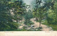 SYRACUSE NY – Rockwell Springs – udb (pre 1908)