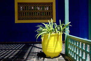 Marrakech villa Majorelle