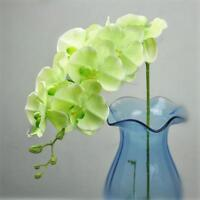 Artificial Floral 12 Head Orchid Phalaenopsis Flower Home Garden Decor Choice