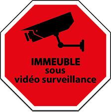 STICKER ADHESIF IMMEUBLE SOUS VIDEO SURVEILLANCE RECOUVERT DE RESINE DOMING5X5 C