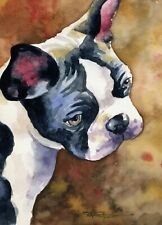 Boston Terrier Dog 8 x 10 Art Print by Artist Djr