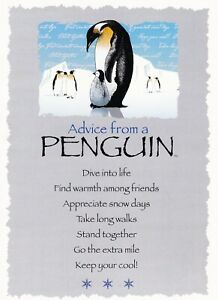 """""""ADVICE FROM A PENGUIN"""" Blank Note card - by Your True Nature!"""