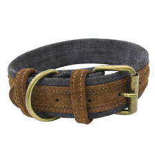 Comfortable And Soft Durable Pet Dog Puppy Collar for Teddy Chihuahua Pug