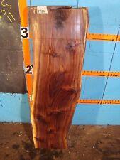 """#8564 Black Walnut Live Edge Slab lumber mantel L 43"""" W 13 1/2"""" T 3 1/2"""""""
