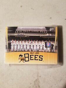 2010 Salt lake Bees Team Set