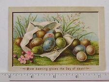 Embossed Victorian Easter Trade Card  Clutch Of Colorful Eggs Grass F58