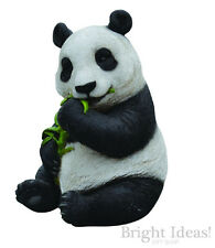 Vivid Arts - REAL LIFE ZOO ANIMALS - Sitting Panda