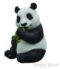 Vivid Arts - REAL LIFE ZOO ANIMALS - Sitting Panda