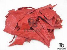PELGIO Real Genuine Crocodile Alligator Skin Leather Hide Pelt Scraps 100 g. Red