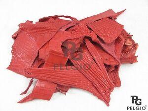 PELGIO Genuine Crocodile Alligator Skin Leather Hide Pelt Scraps 100 gram Red