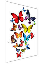Flying Colourful Butterflies on Framed Canvas Wall Art Pictures Animal Prints
