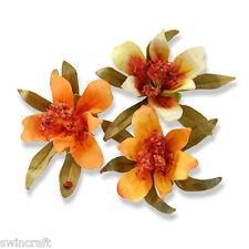 Sizzix Thinlits susans corte muere jardín juego de 3 Flor, Mini Lily 658408