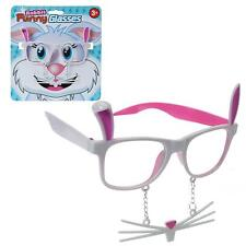 Easter Arts & Craft Decorations Egg Hunt - Bunny Glasses with Whiskers