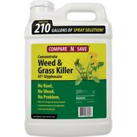 Compare-N-Save Weed Grass Killer 2.5 Gal. 2-Hour Rainproof Post-Emergent