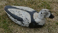 OLD carved wings WOOD DECOY Long Tailed DUCK OLDSQUAW Magdalen Islands Canada
