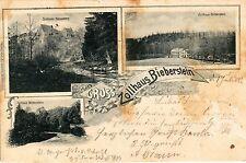 Gruss vom Zollhaus Bieberstein AK 1900 Mehrbild Litho Reinsberg Sachsen 1501224