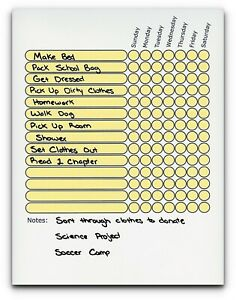 Teen / Adult Chore Chart Use as Dry Erase Board. Daily Planner To Do List