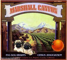 Marshall Canyon Pug Dog Heights Orange Citrus Fruit Crate Label Art Print