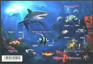 F4646 - FEUILLET NEUF - Série Nature Faune marine poissons tropicaux // 2012