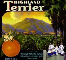 Marshall Canyon West Highland Terrier Dog #2 Orange Fruit Crate Label Art Print