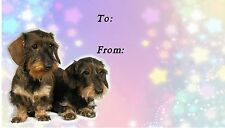 Dachshund Wirehaired Dog Self Adhesive Gift Labels by Starprint