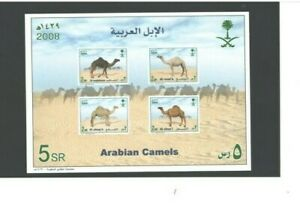 SS, ARABIAN CAMELS, as per Scan