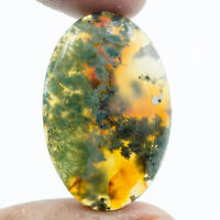 Cts. 32.55 Natural Designer Moss Agate Cab Oval Cabochon Loose Gemstone