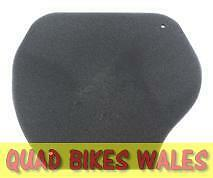 Yamaha Grizzly 550 700 07-13 Air Filter