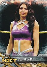 2017 Topps Wwe Women's Division, Moments, NXT-2 Billie Kay
