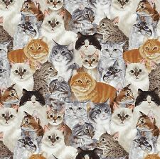 Fabric Cats Allover Full on Cotton 1/4 Yard
