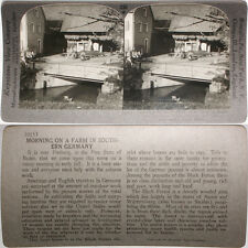 Keystone Stereoview Farm, Edge of Black Forest, GERMANY From RARE 1200 Card Set