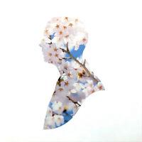 Pet Shop Boys Maxi CD Miracles - Europe (M/M)