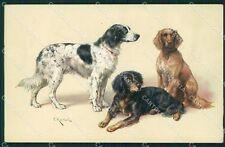 Reichert Hunting Dog MM 287 postcard cartolina QT7079