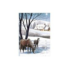 Doug Laird Silent Night Christmas Greeting Card & Envelope by Tree Free