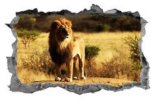 Lion,Sticker,Decal,Decor,Animal,3D,Wall Art,Mural