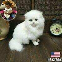 Realistic Persian Cat Pet Plush, Kids And Children Hard Stuffed Doll Toy N6P4