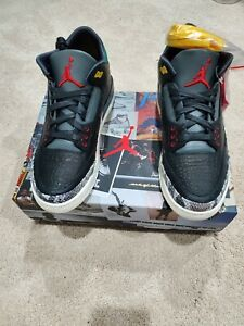 Jordan 3 Retro SE Animal Instinct 2.0- NIB- Size 9