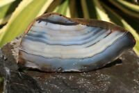 Blue Banded Agate Nodule Geode End Piece Brazil 14.6 oz. Old Stock  Lot 0322e