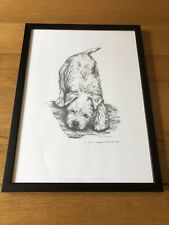 More details for soft coated wheaten terrier framed print of a puppy by darcie olsen - le 12/75