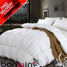 Unbranded 100% Cotton Quilts