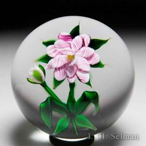 Debbie Tarsitano double-tiered pink-striped flower glass paperweight