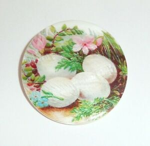 "Pretty Bird Eggs & Pretty Flowers Nest Mother of Pearl MOP Shank Button  1-3/8"""