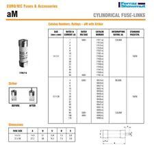 FUSIBLE CARTOUCHE 40A 500V aM PROTECTION MOTEUR 14 X 51 mm 17947-G / X215645 CE