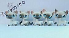 Original LPS Littlest Pet Shop  5 x cat shorthair #5