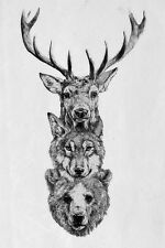 Framed Print - Stag Fox Bear Pencil Sketch (Picture Poster Wild Animal Deer Art)