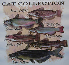 ALL AMERICAN OUTFITTERS  CATFISH COLLECTION  YELLO BLUE BROWN FISHING SHIRT #457