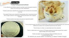 More details for freddy the ship wrecked cat realistic sleeping ginger tom cat with rabbit fur