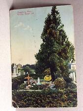 Poet Whittier Burial Lot Amesbury Newburyport Mass Antique Postcard Posted 1911