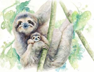 Sloth Canvas Print by Jane Bannon